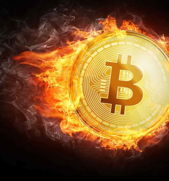 Descubre los mejores casinos que ofrecen ruleta con Bitcoins
