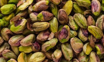 ¿Cómo invertir en pistachos?